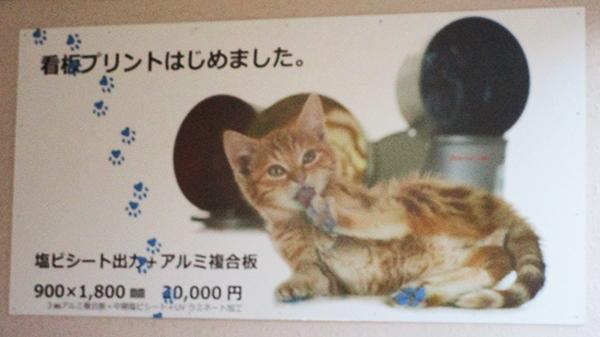 20190513takahashi-1.jpg