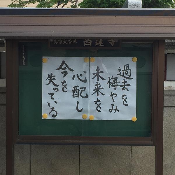 furukawa20190729.jpg